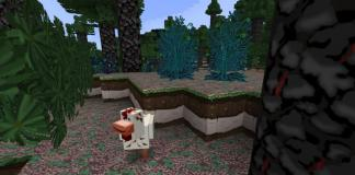 ACME pack for Minecraft