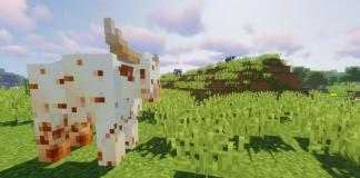Animania mod for Minecraft