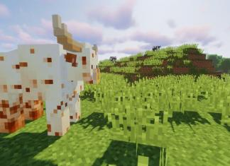 Animania mod for Minecraft