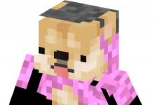 Doge With Pink Sweater Px3 skin