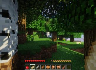 AppleSkin mod for Minecraft - screenshot 4