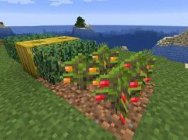 Simple Farming mod for Minecraft - screenshot 2