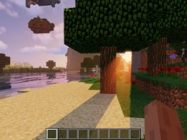 RandomPatches mod for Minecraft - screenshot 5